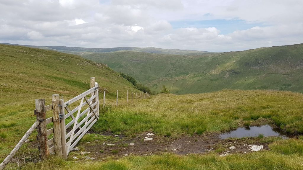 Gate on the ascent of Capplebarrow