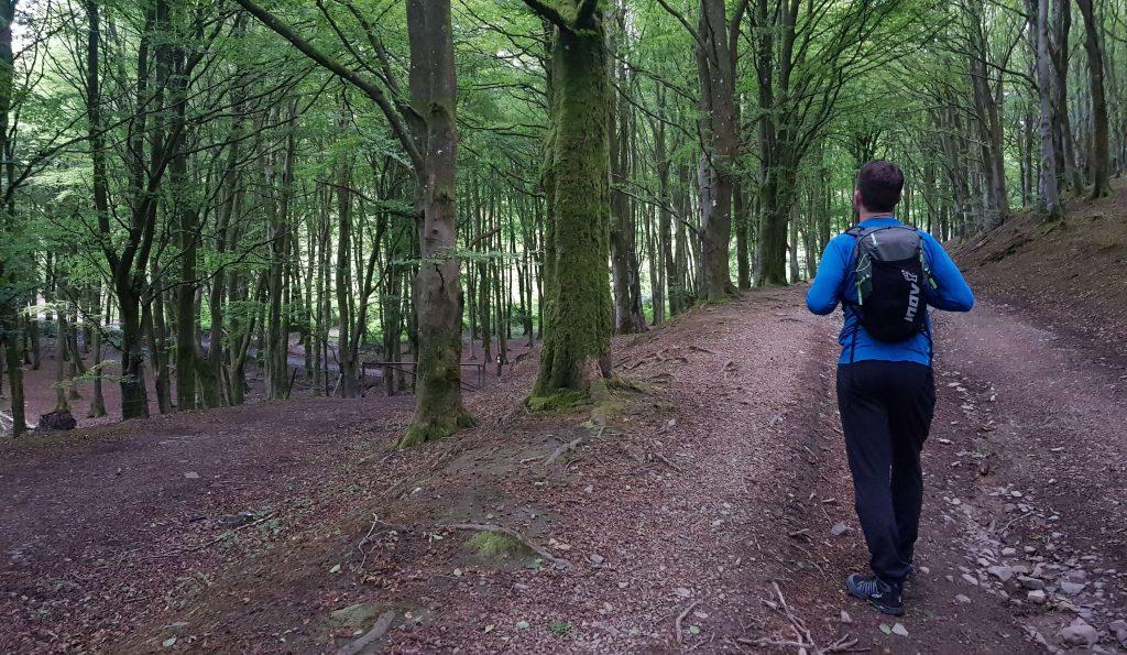 James Forrest walking on the Setmurthy woodland trails
