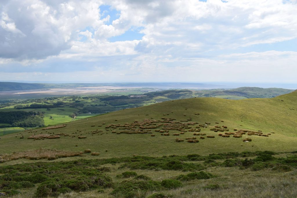 Views to Duddon Sands from the ascent of White Combe