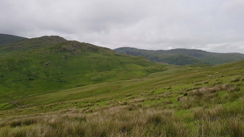 Wainwright views to Shipman Knotts, Tarn Crag and Grey Crag from the descent