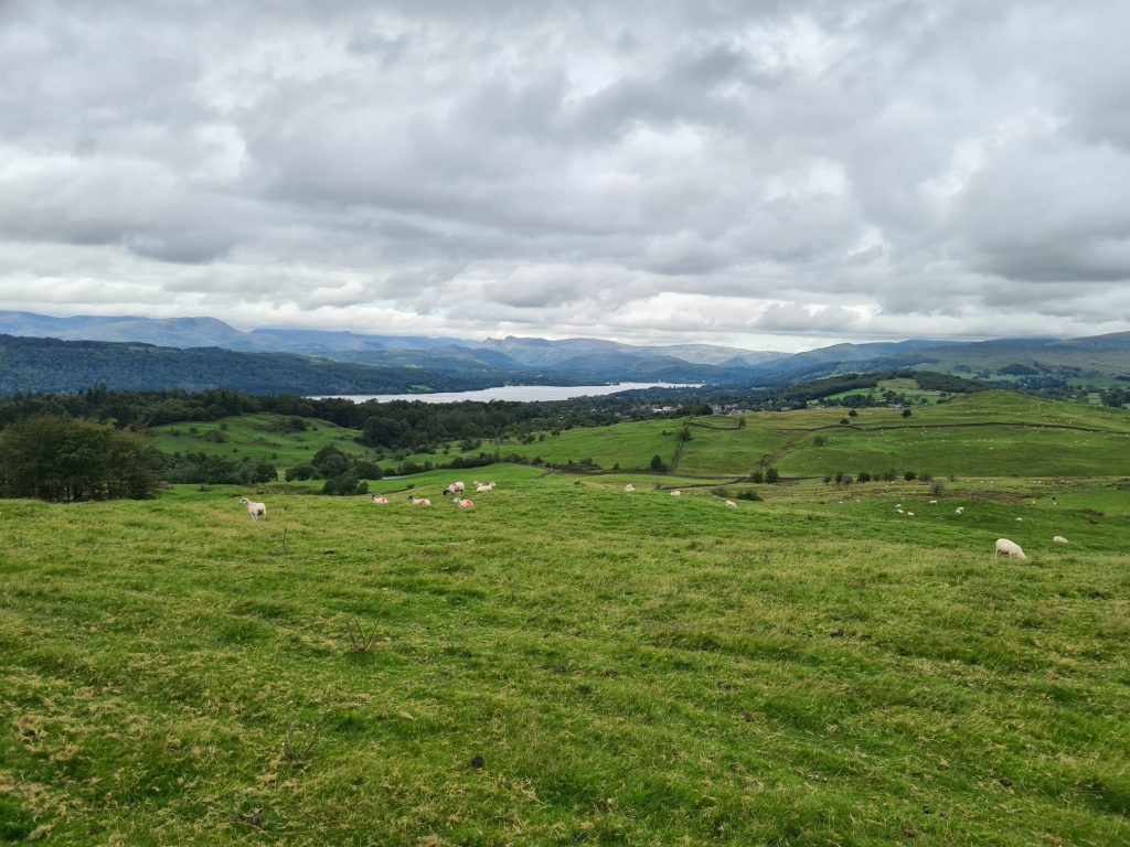 View from the summit of the Nameless Fell