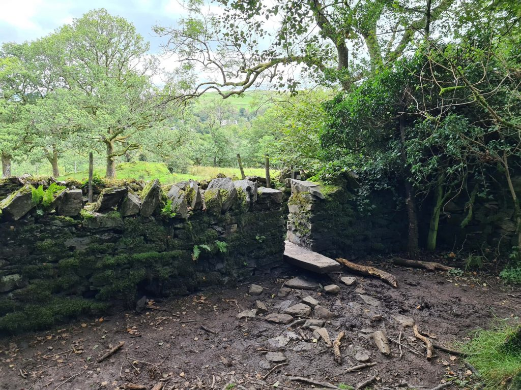 The stile in the wall