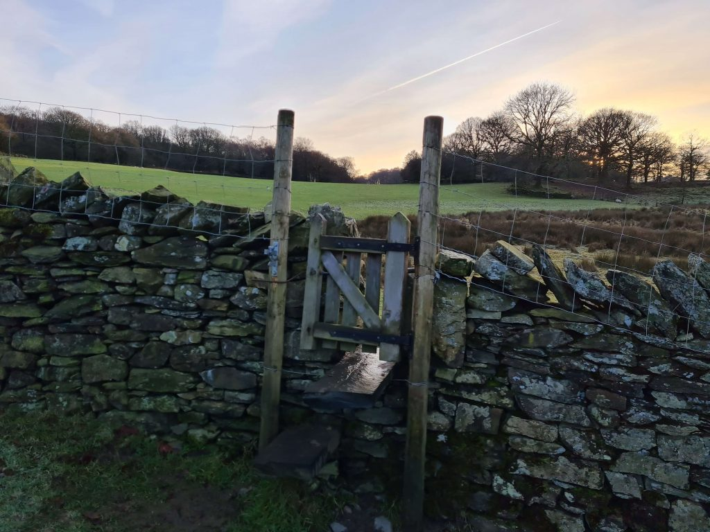 Gate into the field at Finsthwaite
